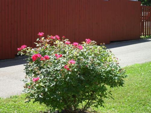 Harmony B&b And Suites - Digby, NS B0V 1A0