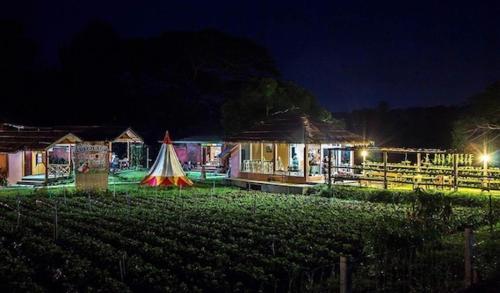 Chiang Dao Story Camp Chiang Dao