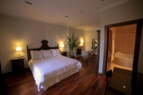 Suite with Terrace Posada Isabel de Castilla 7