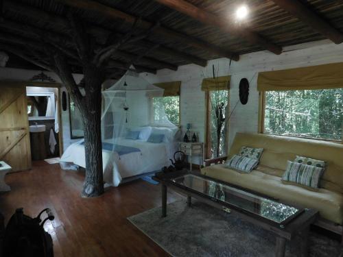 La Casa Del Arbol con pileta privada