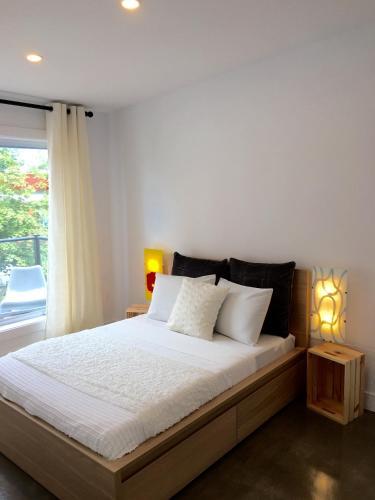 Luxury Apartment Downtown Halifax - Halifax, NS B3K 1P3
