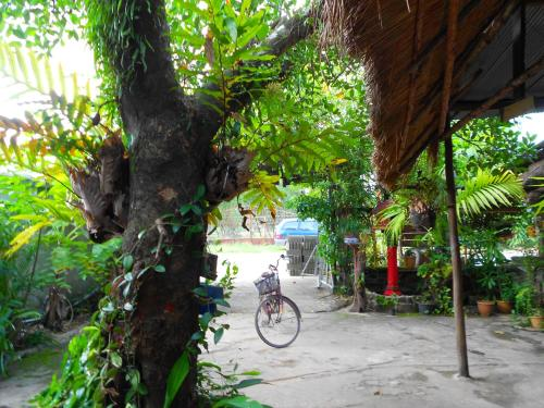 Paddy's Bamboo Guesthouse