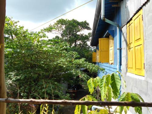 Paddy's Bamboo Guesthouse salas fotos