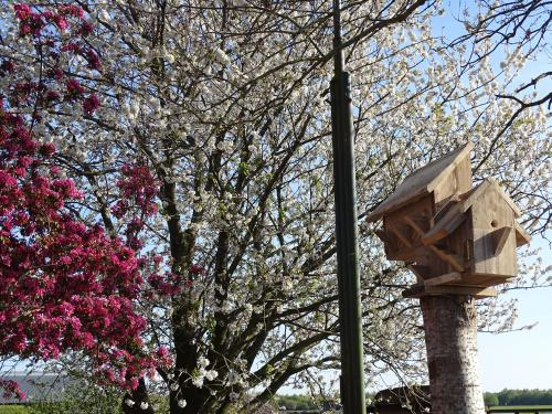 Hoeve Blitterswijk, Pension in Scheerwolde bei Giethoorn