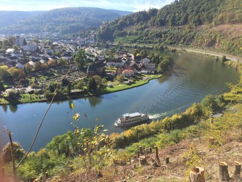 . Romantisches Hirschhorn am Neckar