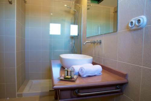Standard Zweibettzimmer - Einzelnutzung Hotel Villa Monter 9
