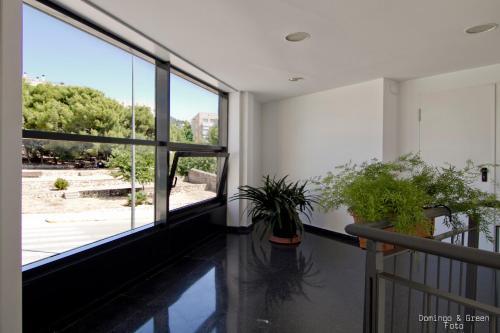 Blue Azur Apartments photo 8