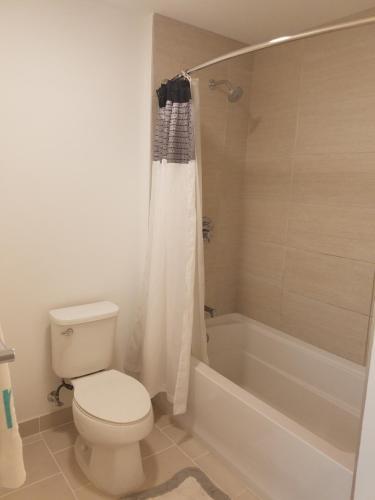 Ultraluxury Apartment In Brickell