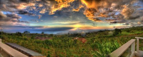 Kona View Estate - Vista Suite - Holualoa, HI 96725