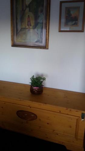 Apartment Casa Doriana Marilleva 1400