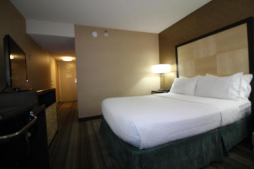The Watson Hotel Номер с кроватью размера «queen-size»