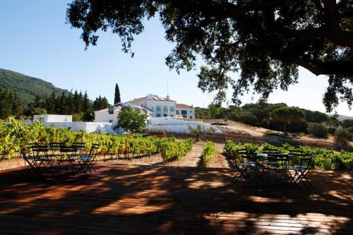 Foto de Hotel Casa Palmela