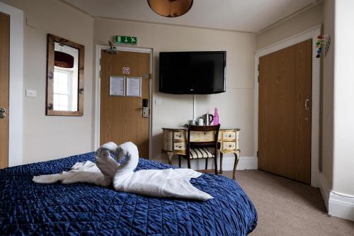 Foto - Home Brighton Backpackers
