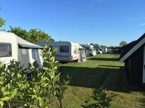 Hotel-overnachting met je hond in Saltum Strand Camping & Cottages - Saltum