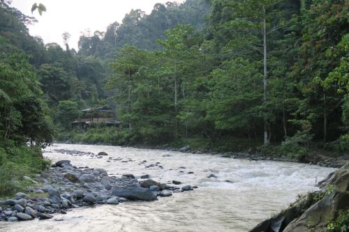 Back to Nature Ecotourism, Langkat