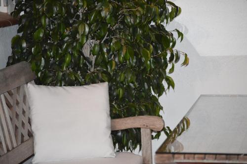 Apartment Pla dels Cirerers photo 43