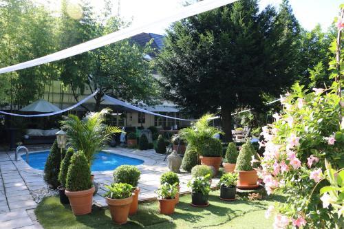 Hotel Ashley's Garden photo 38