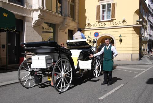 Hotel König von Ungarn - 1 of 72
