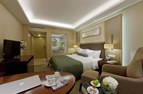 Deluxe Executive Room(Chinese only)