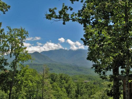 Artistic Mountain - Two Bedroom Home - Gatlinburg, TN 37738