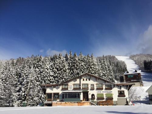 Lodge Hahnenkamm - Accommodation - Nozawa Onsen