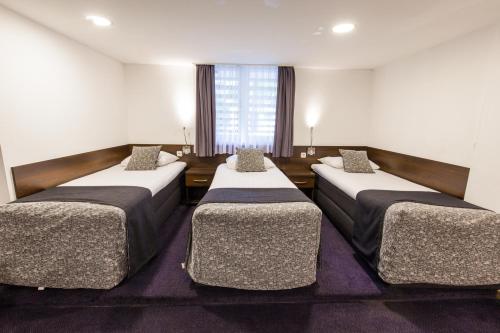 فندق سيتي غاردين أمستردام