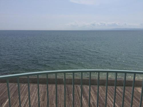 Фото отеля Awaji TT House Pacific Over Seas