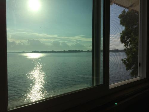 Hilo Bay Oceanfront Bed And Breakfast - Hilo, HI 96720