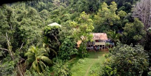 Bolita Rainforest Hostel and Cabinas