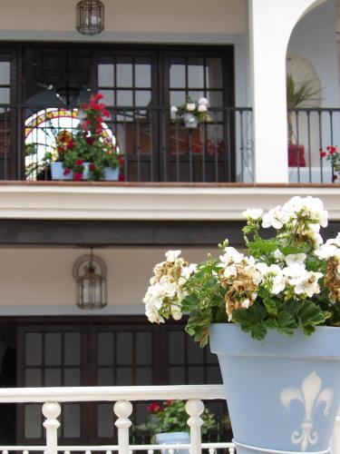 Calle los Bayuncos, 1, 21750 El Rocío, Huelva, Spain.