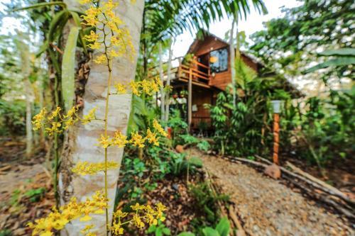 HotelKapievi Ecovillage