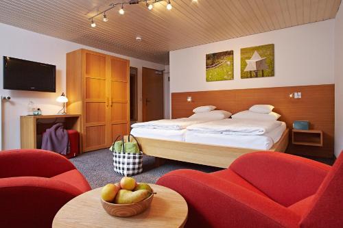 Bio-Hotel Oswalda-Hus, Bregenz