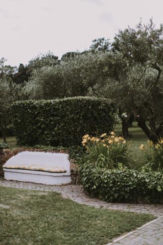 Il Pettirosso B&B photo 68