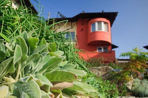 Szőnyi Garden Hotel Pest photo 42