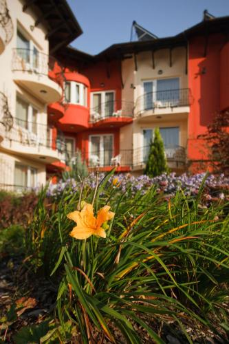 Szőnyi Garden Hotel Pest photo 77