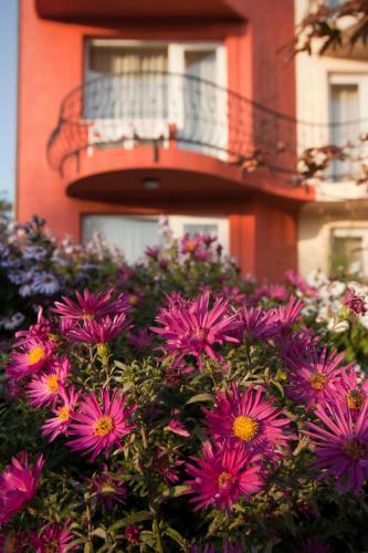 Szőnyi Garden Hotel Pest photo 112