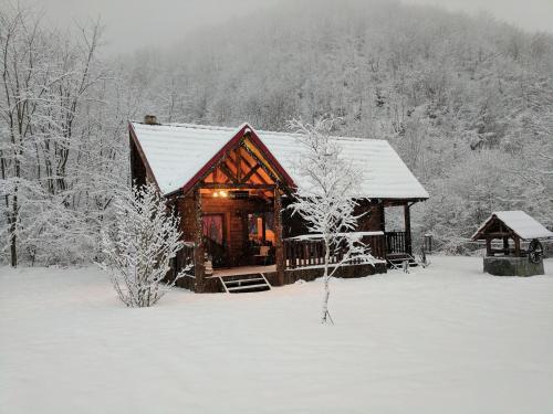 . The Little Mountain Cabin