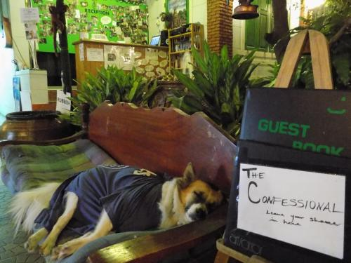 The Oasis Hostel photo 23
