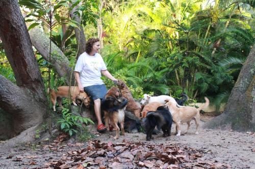 . Nature Retreat with Healing Dogs in Brazil