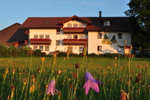 Bauernhof Bauer - Apartment - Zwiesel