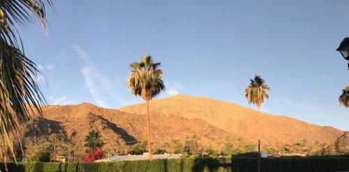 Delos Reyes Palm Springs Main image 2