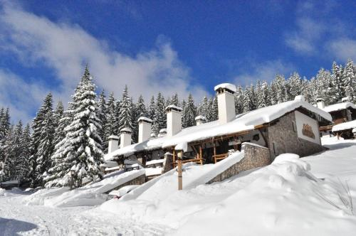 Accommodation in Pamporovo