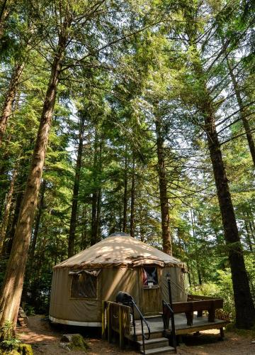 6 Yurts In And Near Florence Oregon Usa Updated 2021 Trip101