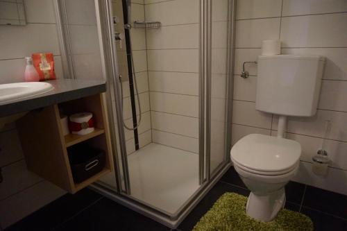 Фото отеля Apart Landhaus Zangerl