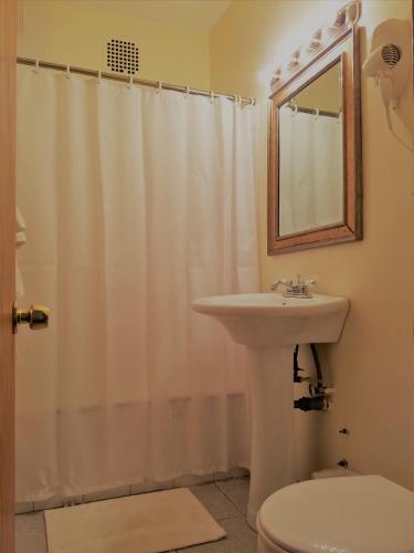 Dewitt Hotel and Suites Двухместный номер-студио с 2 двуспальными кроватями