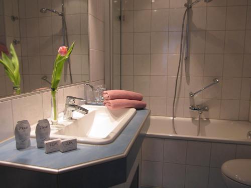 Hotel Anlage Heidelberg