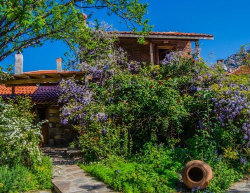 Kapıkırı Agora Evleri rezervasyon