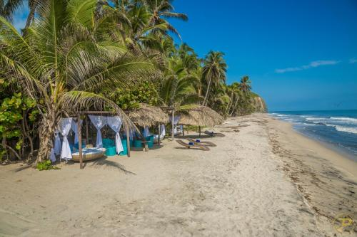 . Playa la Roca Ecohotel