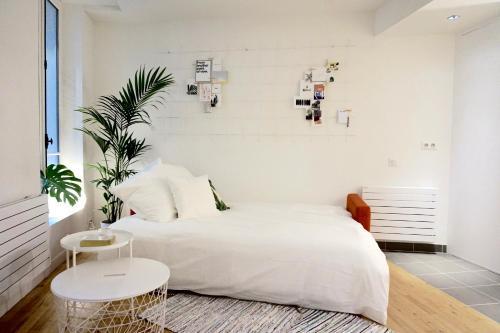 Appartement Le Rennes photo 3