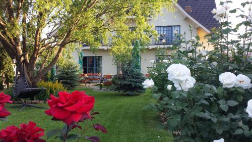 . Villa Westfalia Guest House